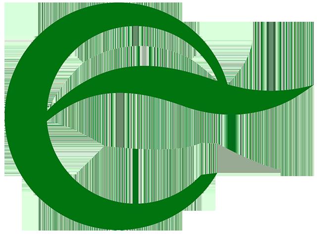 logo-FENIE-ENERGIA